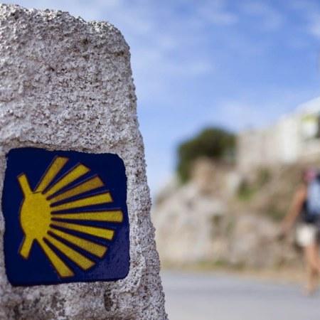 Máster Camino de Santiago